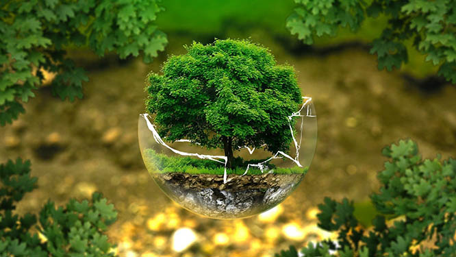 Giải pháp kiểm soát môi trường thông minh